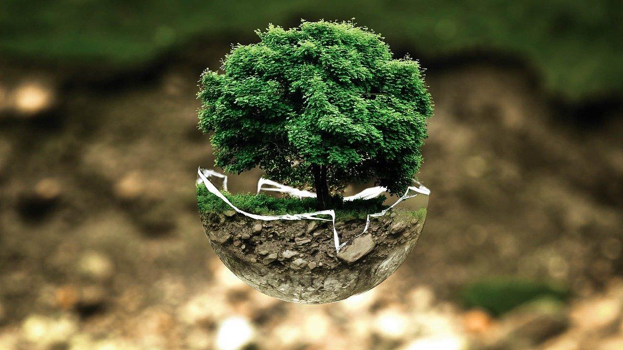 Opciones ecológicas para el Take away